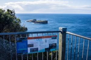 6 East Coast of Tasmania-137