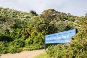 6 East Coast of Tasmania-27