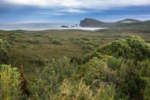 6 East Coast of Tasmania-36