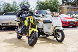 Peter's Honda Gyro UP, the three-wheeled scooter.